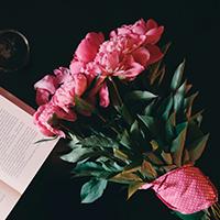 Consegna a domicilio fiori e piante online