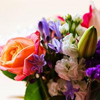 Consegna fiori e piante a domicilio in Austria online