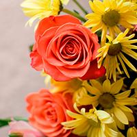 Consegna fiori a domicilio in Grecia online